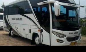 Bus wisata Iin Trans